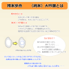秋田地酒 限定品飛良泉27 説明