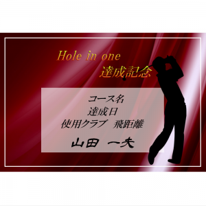 オリジナルラベル日本酒 ゴルフ ホールインワン記念 c008ho
