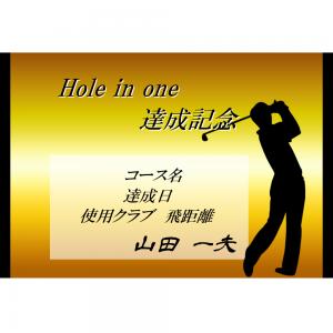オリジナルラベル日本酒 ゴルフ ホールインワン記念 k002ho