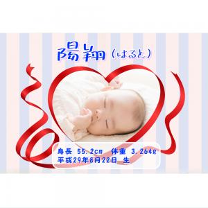オリジナルラベル日本酒 出産祝い 誕生祝い r002nb