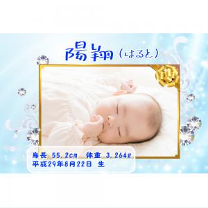 オリジナルラベル日本酒 出産祝い 誕生祝い r004nb