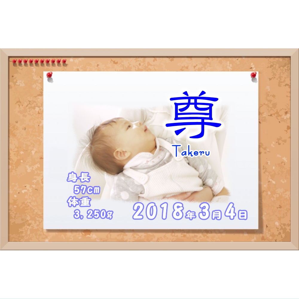オリジナルラベル日本酒 出産祝い 誕生祝い r006nb