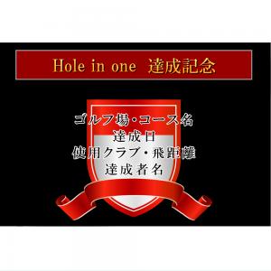 オリジナルラベル日本酒 ゴルフ ホールインワン記念 s003ho