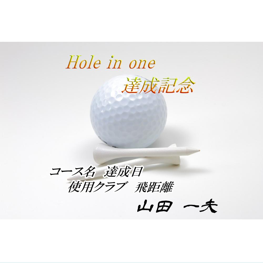 オリジナルラベル日本酒 ゴルフ ホールインワン記念 s007ho